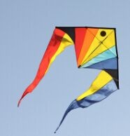 1.5m Rainbow Fish Delta Kite [Albatross]